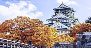 Đăng ký gói cước chuyển vùng quốc tế đi Nhật Bản chỉ từ 100.000đ/lần đăng ký