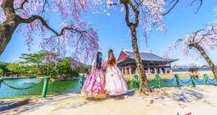 Đăng ký gói cước CVQT tại Hàn Quốc chỉ từ 100.000đ